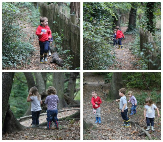WoodsWalking2