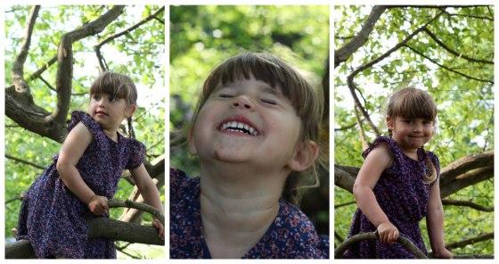 Sophie-tree