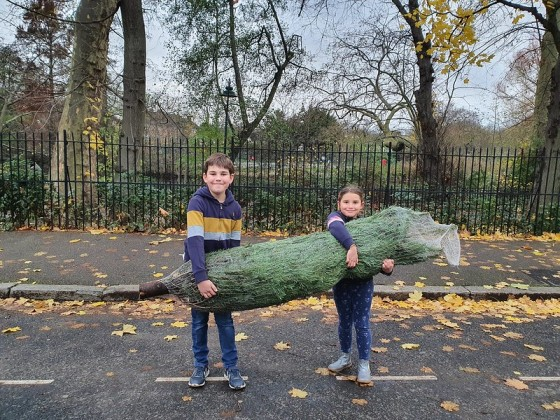 Kids carrying our Christmas tree